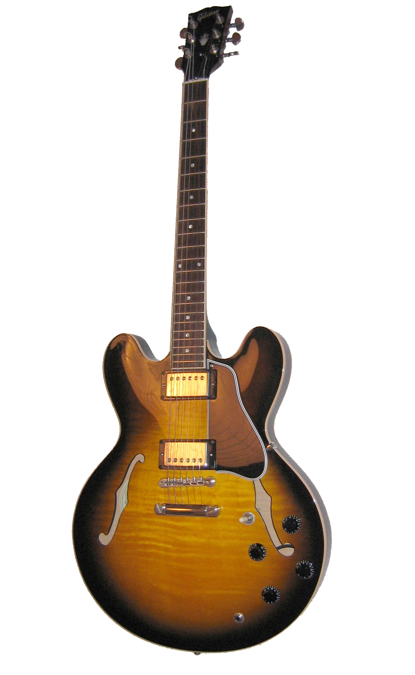 Holow Body Guitars